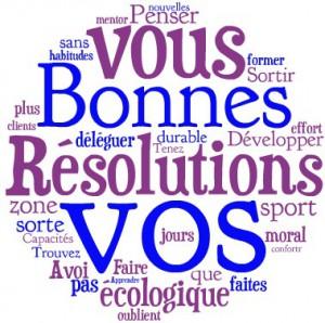 bonnes-resolutions-2013-300x298[1]
