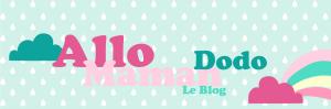 cropped-banniere-dec-